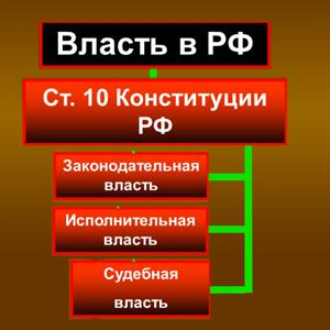Органы власти Льва Толстого