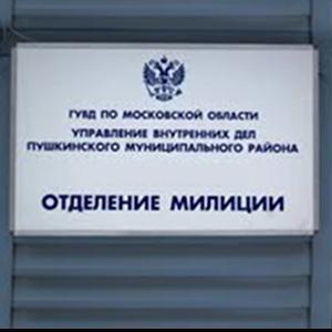 Отделения полиции Льва Толстого