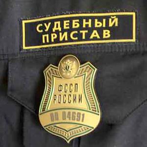 Судебные приставы Льва Толстого